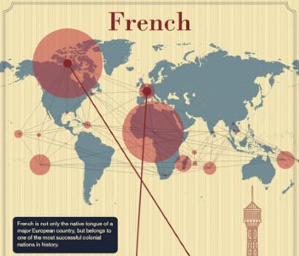 French Language Infographic Infographic