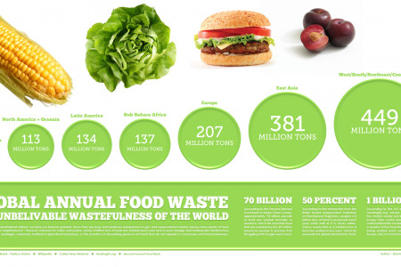 GLOBAL ANNUAL FOOD WASTE Infographic