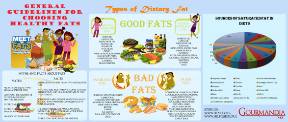 General Guidelines for Choosing healthy fats