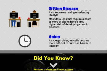 Getting Fit: The Personal Training Reference Guide  Infographic