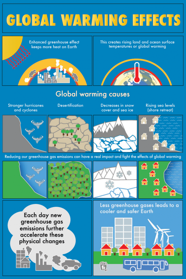 Global warming causes and effects Infographic