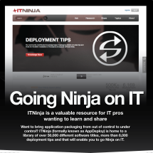 Going Ninja on IT Infographic