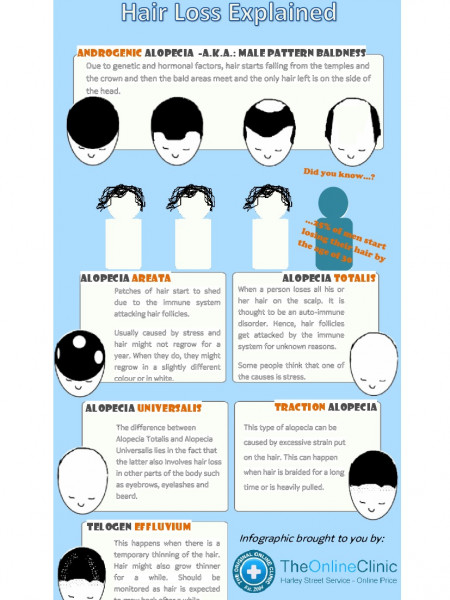 Hair Loss Explained Infographic