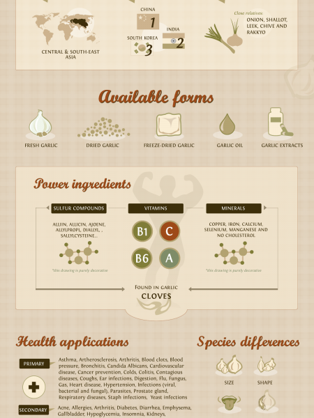 Garlic - Amazing Natural Cure for Your Health Infographic