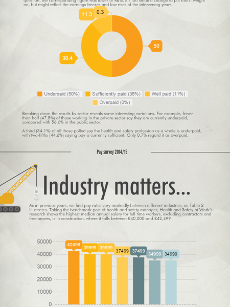 Health and Safety Professionals' Pay Survey 2014/2015 Infographic