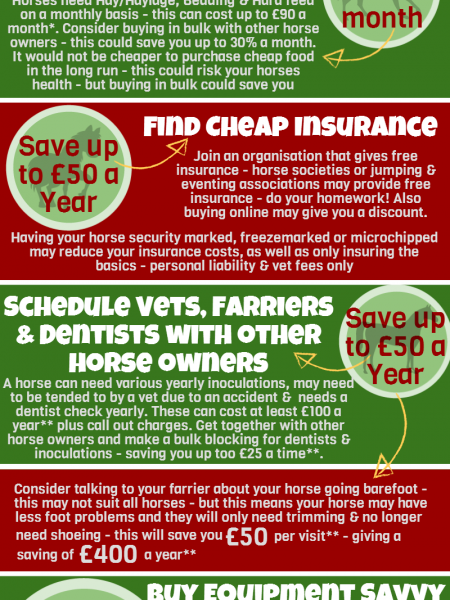 Horse Owners Save Money Infographic
