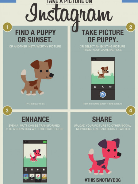 How To Take A Picture On Instagram Infographic