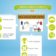 Milk Collection Communities Infographic