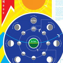 Moon Phases Infographic