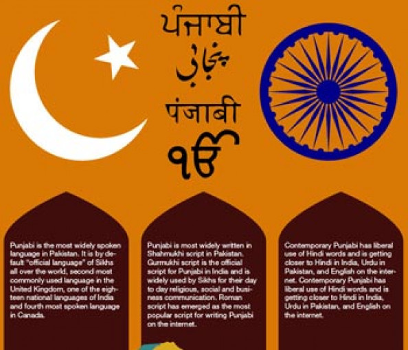 Punjabi Language Infographic Infographic