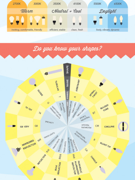 Shedding light on... light bulbs Infographic