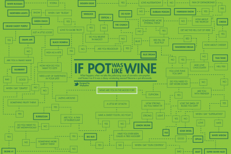 So you want to smoke pot Infographic