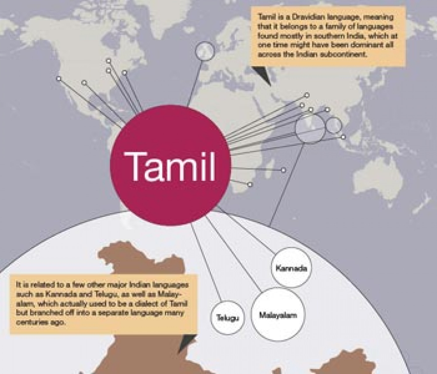 Tamil Language Infographic | Visual.ly
