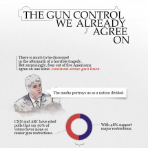 The Gun Control We Already Agree On Infographic