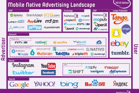 The Mobile Native Advertising Landscape Infographic
