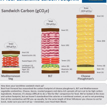 The Sandwich Counter: Your Lunchtime Sandwich Footprint Infographic