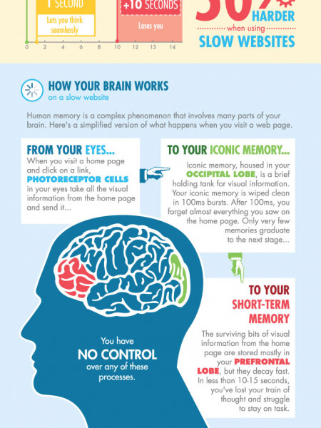 This Is Your Brain on a Slow Website Infographic