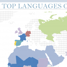 Top Languages on the Internet Infographic