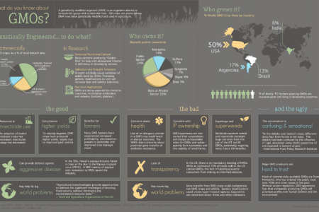 What do you know about GMOs? Infographic