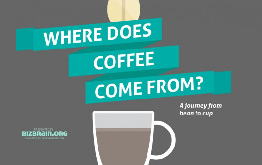 Where does coffee come from?