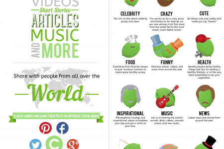 The Classy Lime Infographic  Infographic