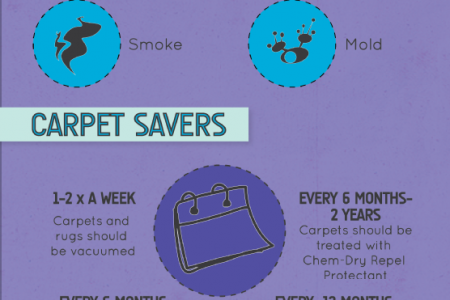 A Basic Guide to Maximizing the Life of Your Carpet  Infographic