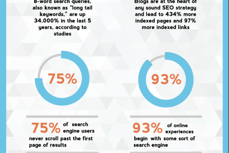 A Bird's-Eye View of the World of SEO Infographic