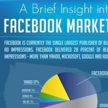 A Brief Insight into Facebook Marketing Infographic