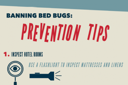 A Bug's Life: Bed Bugs on the Move Infographic