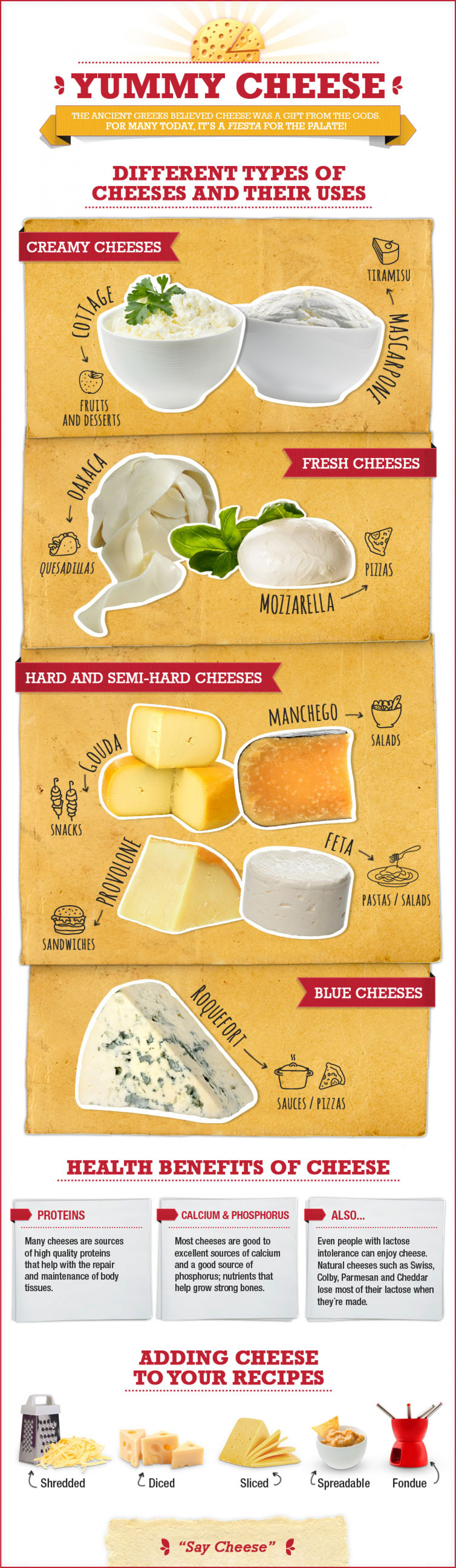 A Cheese Course: The Basic Types and Uses of Cheese Infographic