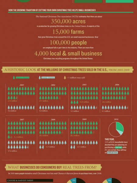 A Closer Look at the Christmas Tree Industry  Infographic