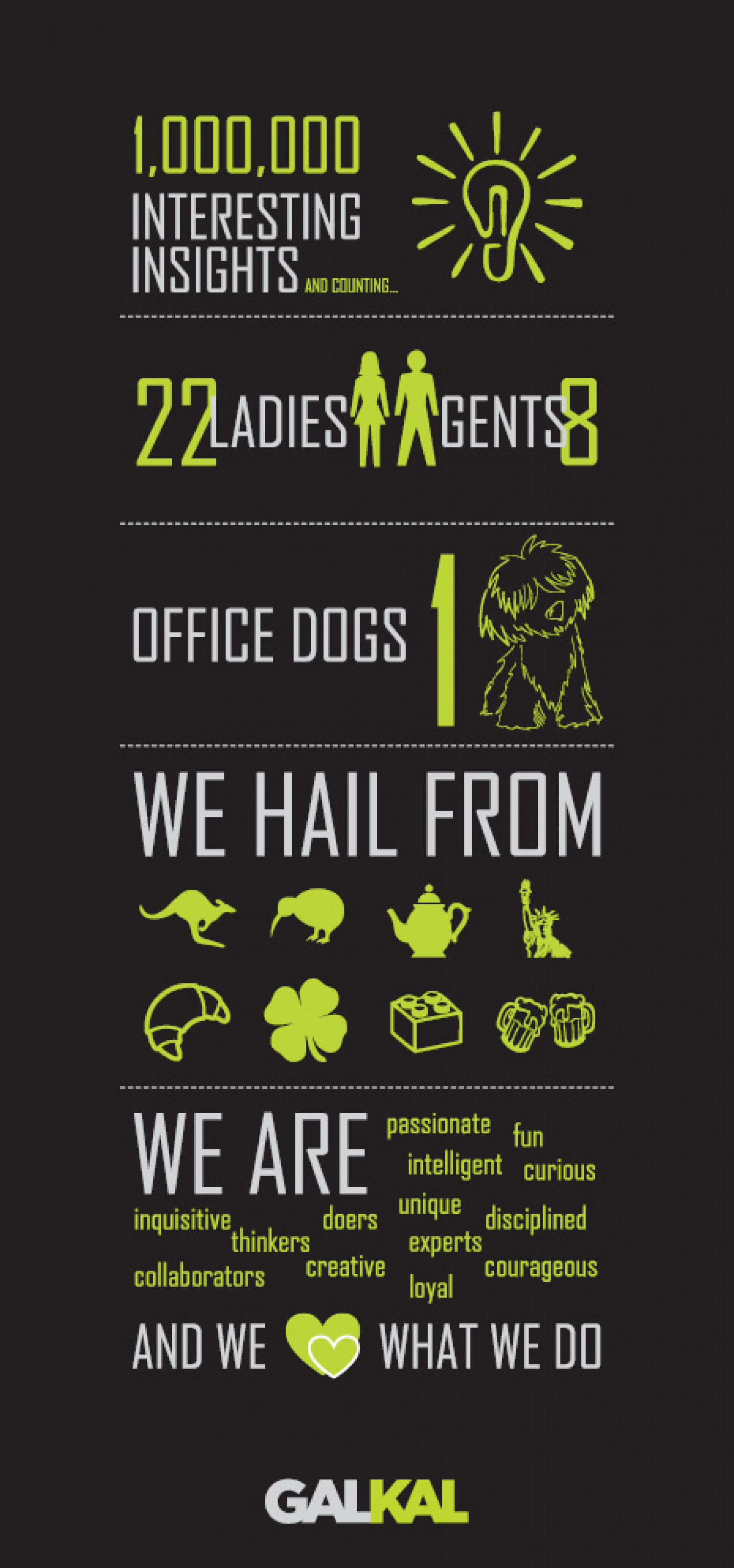 A Few Fast Facts About the Team at GALKAL!  Infographic