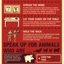 A Guide to Helping Animals Infographic