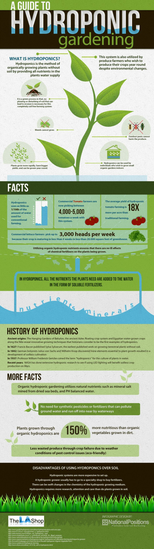 A Guide to Hydroponic Gardening
