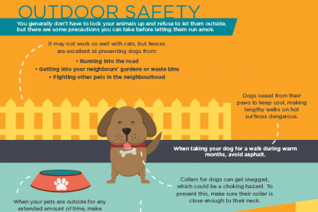 A Guide to Pet Proofing Your Home Infographic