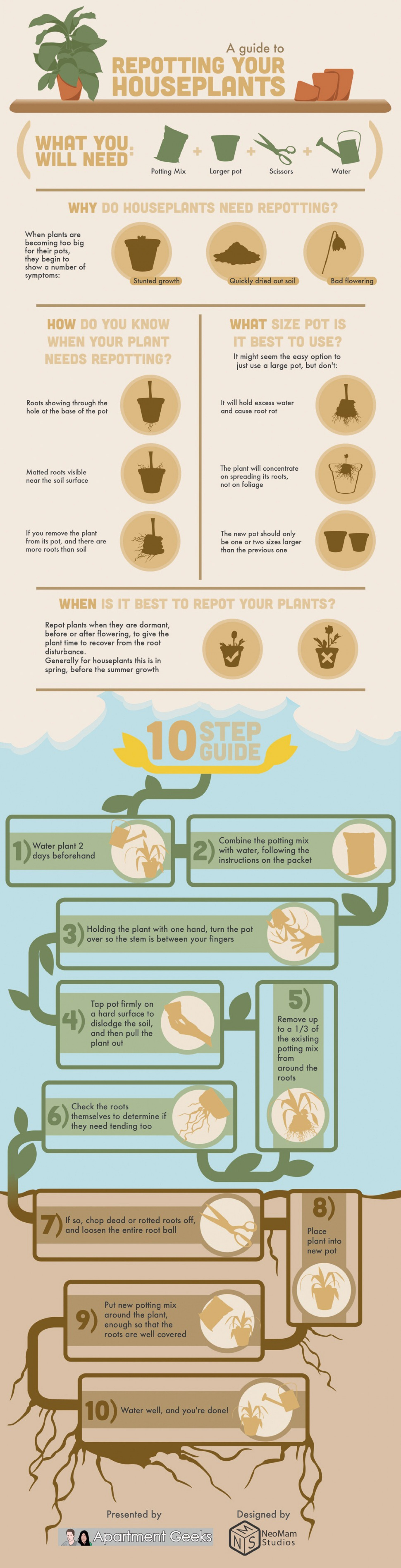 A Guide To Repotting Your Houseplants  Infographic