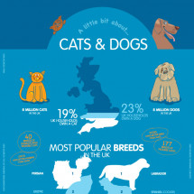 A little bit about... Cats & Dogs Infographic