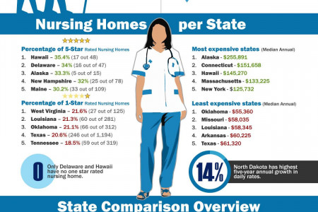 A Look at Nursing Homes in the US in 2013 Infographic