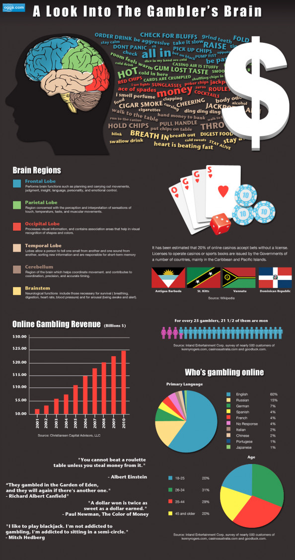 A Look Into A Gambler's Brain Infographic