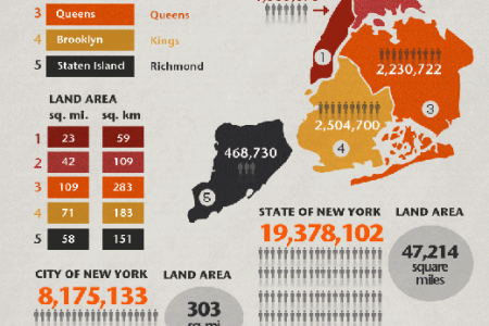 A Moving Guide to NYC Infographic