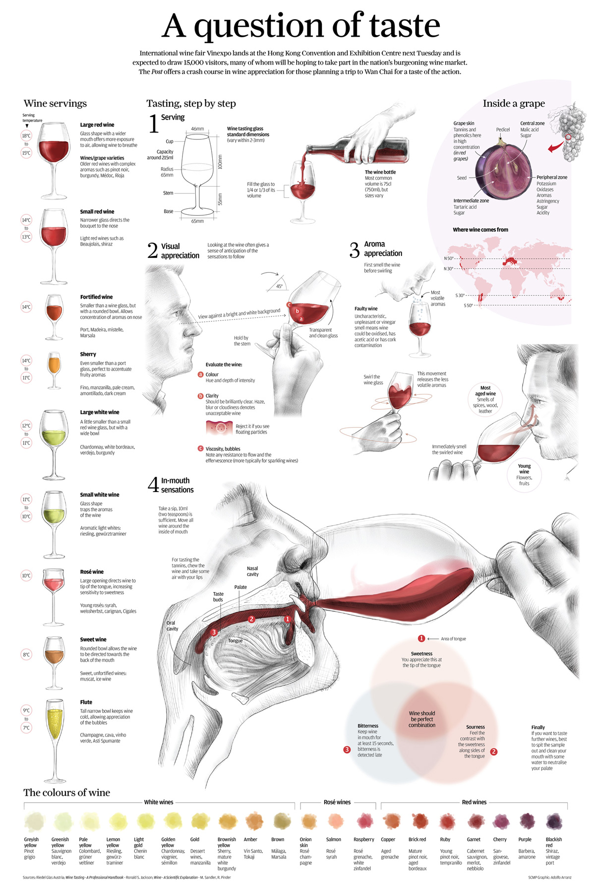 Wine Tasting Infographic Drinkedin Trends