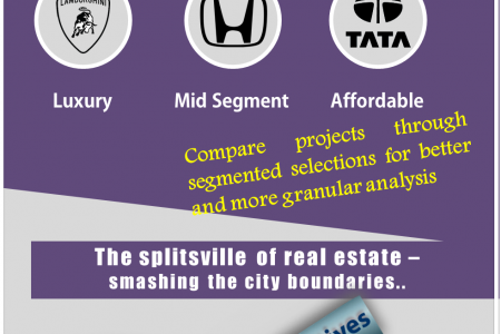 A Real Estate Website in India - Visually Different Infographic