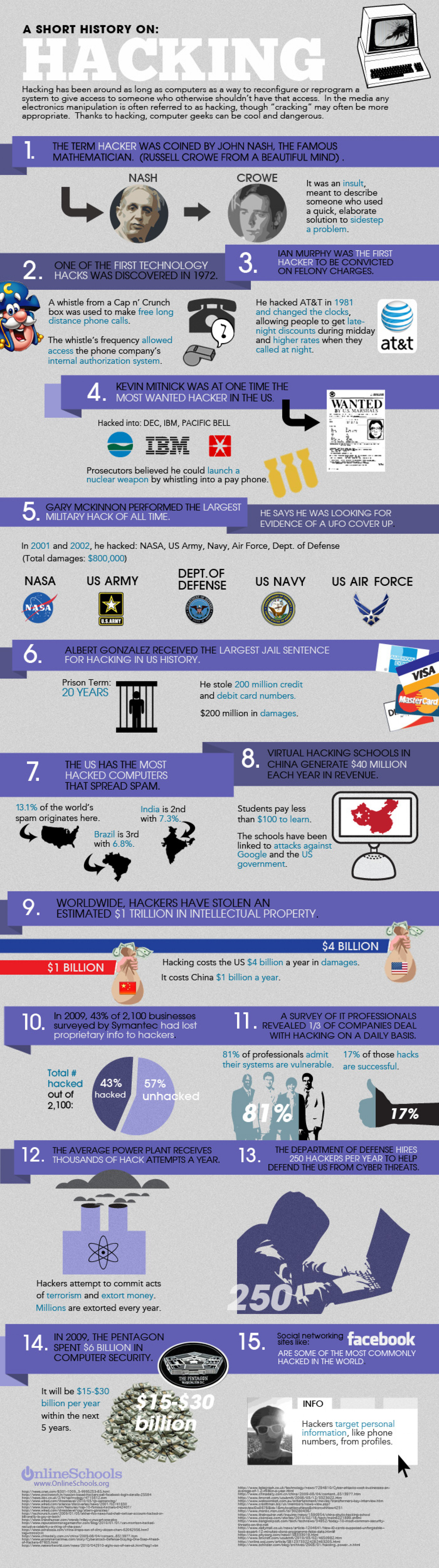 A Short Story On: Hacking Infographic