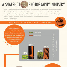 A Snapshot of the Photography Industry Infographic