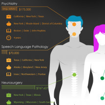 A Specialist in Need Infographic