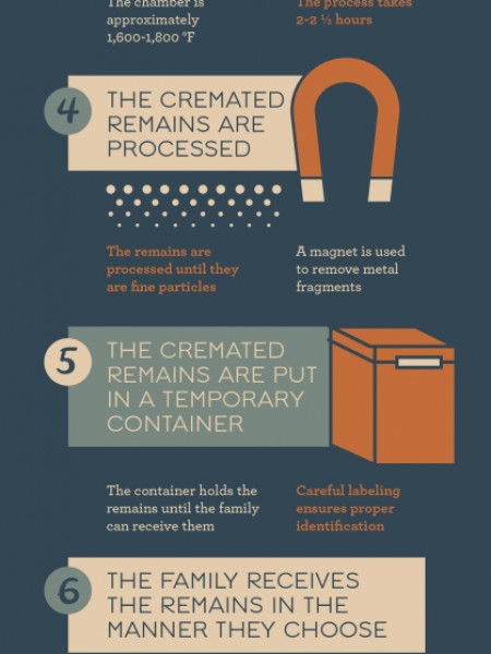 A Step-by-Step Guide to the Cremation Process Infographic