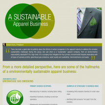 A Sustainable Apparel Business Infographic