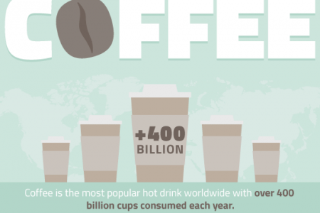 A Visual Guide To Coffee Infographic