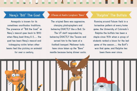 A Visual Guide to College Game Day Traditions Infographic