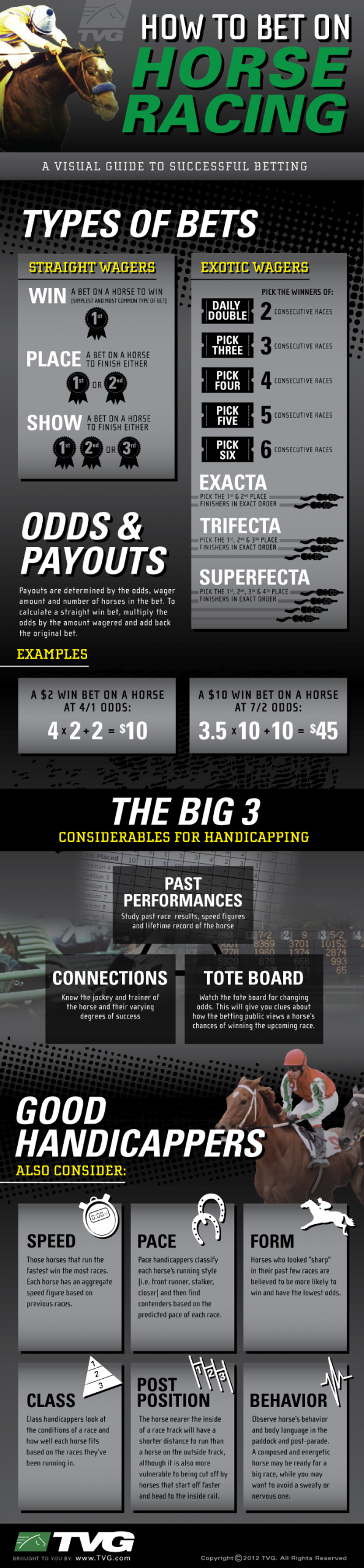 A Visual Guide to Placing Bets on Horse Races Infographic